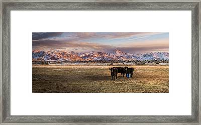 The Majestic Canyon Mountains Framed Print