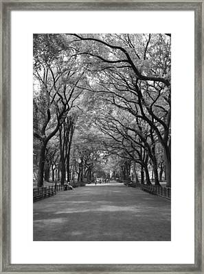 The Mall In Central Park And Poets Walk Framed Print by Christopher Kirby