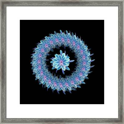 The Mandala Of Blue Hued Tropical Flower Framed Print by Jacqueline Migell