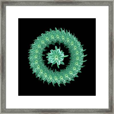 The Mandala Of Sea Greentropical Flower Framed Print by Jacqueline Migell