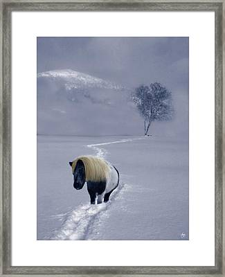 The Mane And The Mountain Framed Print by Wayne King