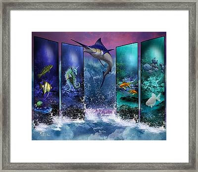 The Marlin And His Sea Friends  Framed Print by Ali Oppy