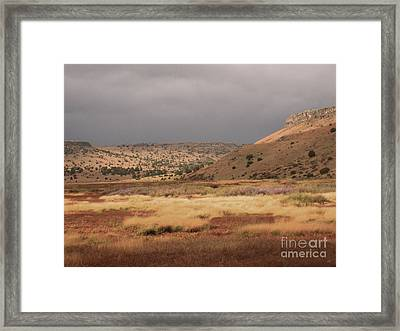 The Marsh Nelsons Reservior Framed Print