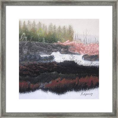 The Marsh Of Changing Color Framed Print by Harvey Rogosin