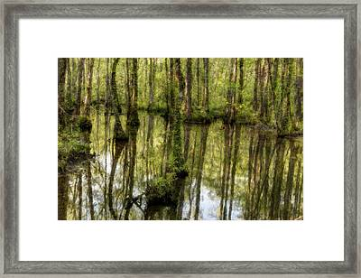 The Marsh Framed Print by Randy Walton
