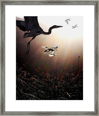 The Marsh Framed Print by Wingsdomain Art and Photography