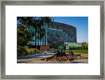 The Marshall Center At Usf  Framed Print