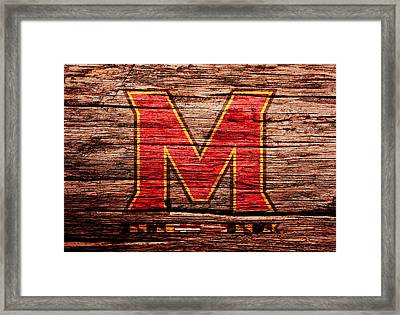 The Maryland Terrapins 1a Framed Print by Brian Reaves
