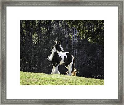 The Matriarch Framed Print