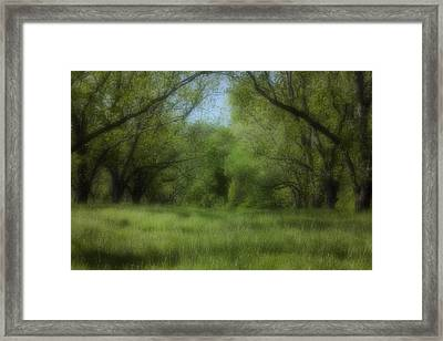 The Meadow Framed Print by Ayesha  Lakes