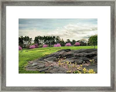 Framed Print featuring the photograph The Meadow Beyond by Jessica Jenney