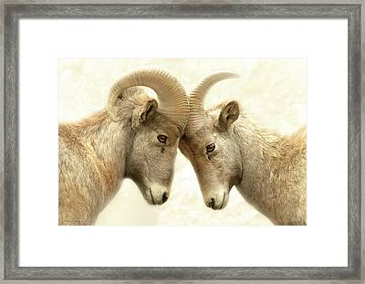 The Meeting Of The Minds Framed Print