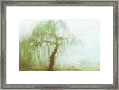 The Memories That Could Have Been Framed Print by Angela A Stanton