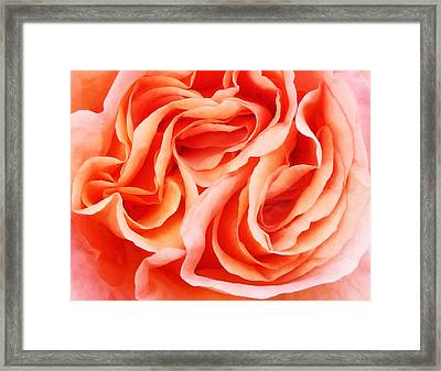 The Menage A Trois Framed Print