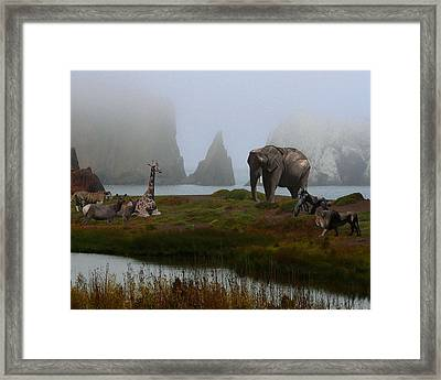 The Menagerie 2 Framed Print by Wingsdomain Art and Photography