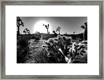 Merciless, Black And White Framed Print