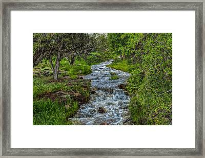 The Mighty Dream  Framed Print