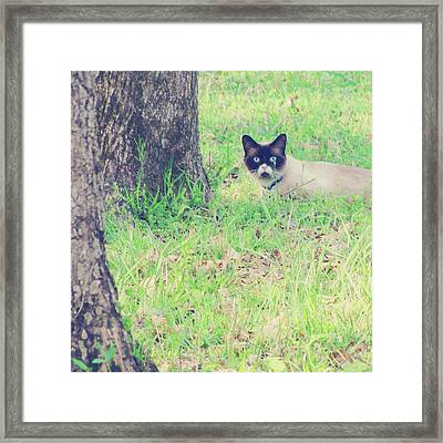 The Mighty Hunter Framed Print by Amy Tyler