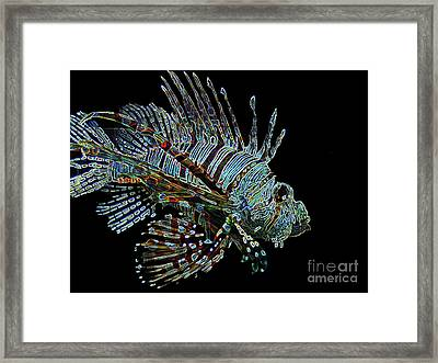 The Mighty Lion Fish Framed Print by Carol F Austin