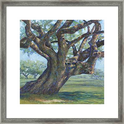 The Mighty Oak Framed Print
