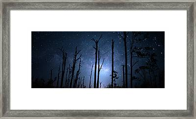 The Milky Way Forest Framed Print by Mark Andrew Thomas