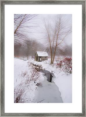The Mill And Creek At Morris Arboretum Framed Print