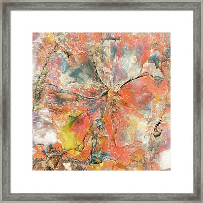 The Mineral Tree Framed Print