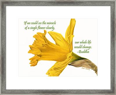 The Miracle Of A Single Flower Framed Print by Sarah Batalka