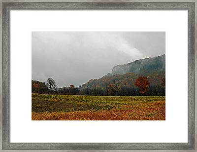 Framed Print featuring the photograph The Mist by John Stuart Webbstock