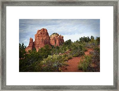 The Mitten A Formal Portrait Framed Print by Dan Turner