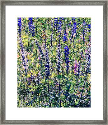Framed Print featuring the photograph The Mix by Elfriede Fulda