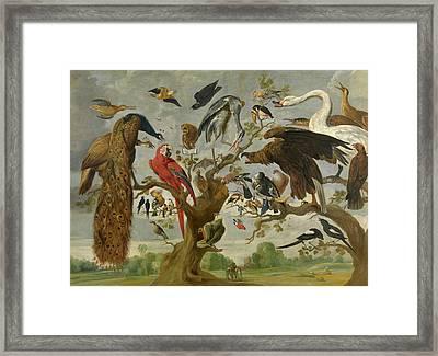 The Mockery Of The Owl Framed Print