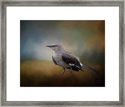 Framed Print featuring the photograph The Mockingbird A Bird Of Many Songs by David and Carol Kelly