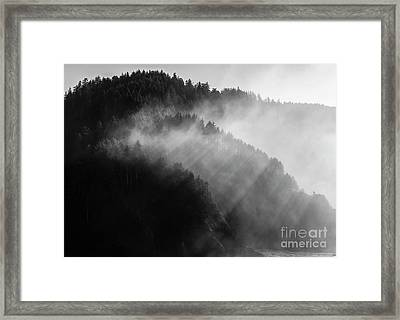 The Moment Created By Sunlight Framed Print by Masako Metz