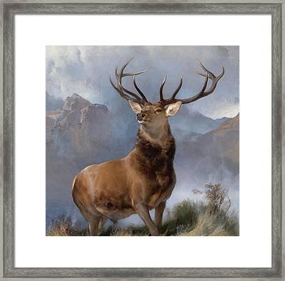 Monarch Of The Glen Framed Print
