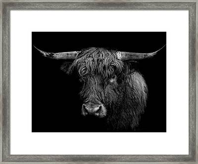 The Monarch Framed Print by Paul Neville