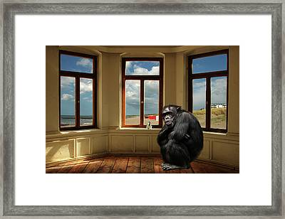 The Monkey And The Bird Framed Print