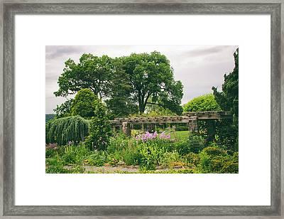The Monocot Garden Framed Print by Jessica Jenney