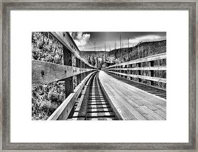 The Monotone Trestle Framed Print