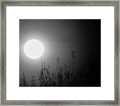 The Moon And The Stars Framed Print by John Glass