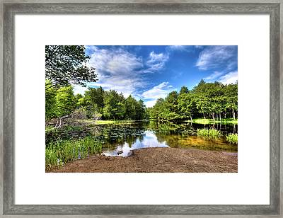 Framed Print featuring the photograph The Moose River At Covewood by David Patterson