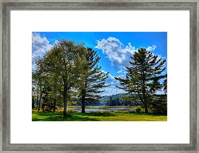 The Moose River In Thendara Framed Print by David Patterson