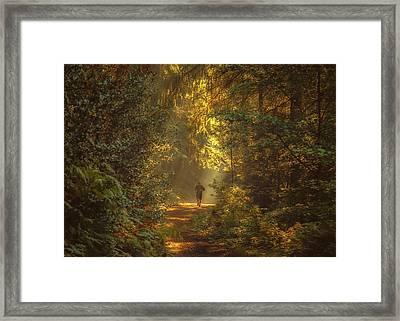 The Morning Jog Framed Print by Chris Fletcher