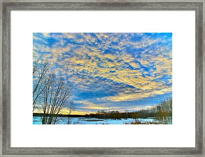 The Morning Show Framed Print by Robert Pearson
