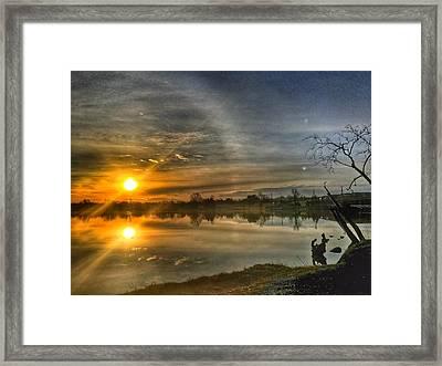 The Morning Sun Dog Framed Print