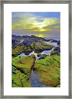 Framed Print featuring the photograph The Mossy Rocks At Sunset by Tara Turner