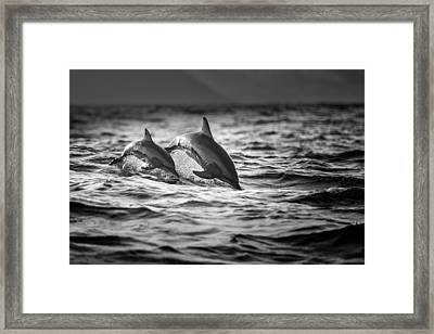 The Mother And The Baby Framed Print by Gunarto Song