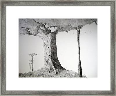 The Mother Lode Framed Print
