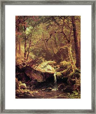 The Mountain Brook Framed Print
