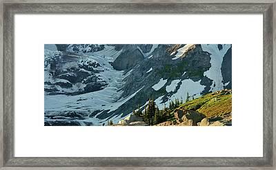 The Mountain Goat  Framed Print